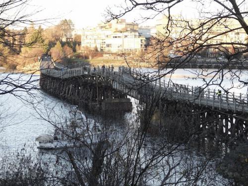 The Selkirk Trestle