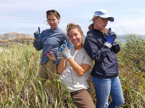 Kalina, Anna and Nicole, contractors, Trial Islands restoration team