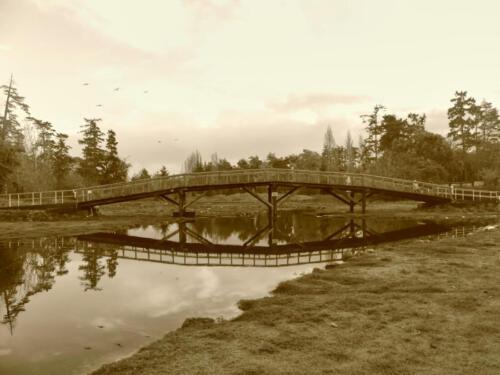 The footbridge across Gorge Creek