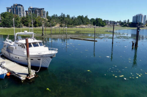 West Bay Flats, Victoria Harbour, Esquimalt,